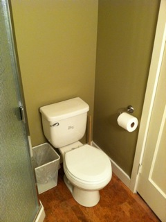 Basement Remodel Bathroom